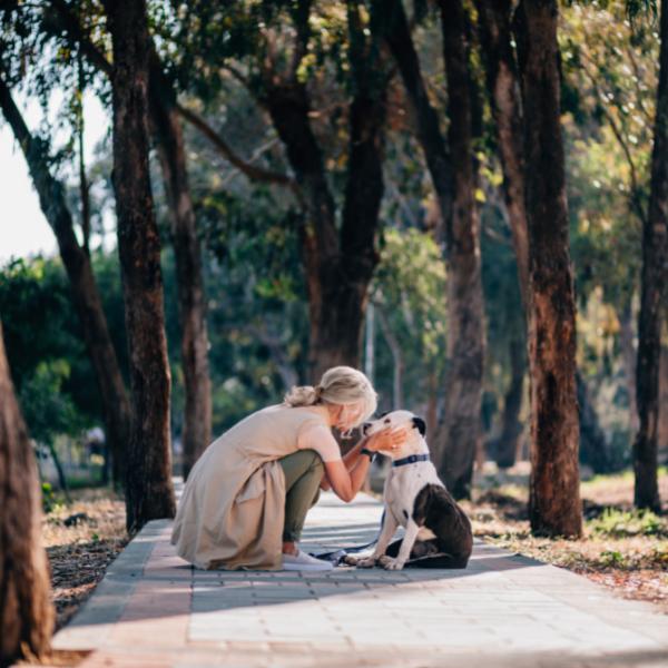 Geheilt aber nicht gesund - eine Frau küsst ihren Hund